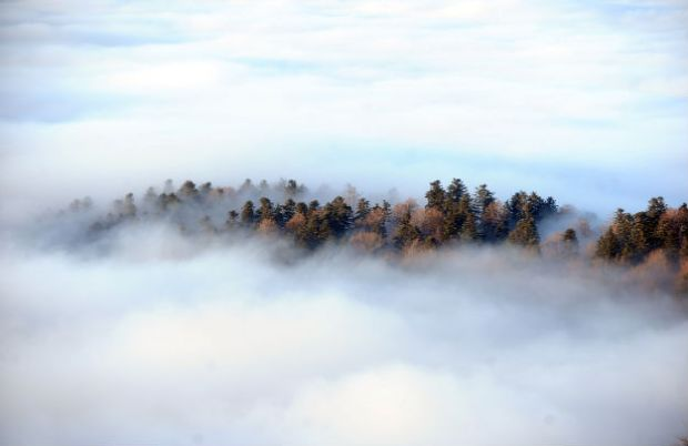 oblaci_suma_sljeme_sopta_cropix