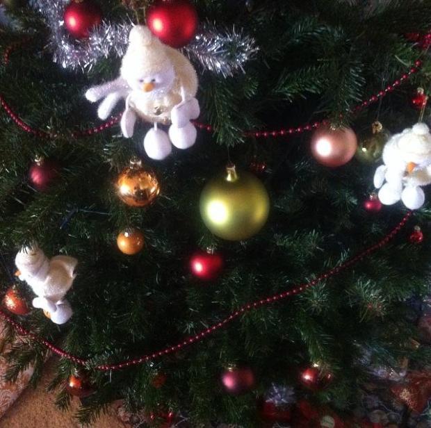 20 christmas tree